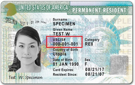 Alien registration number on green card