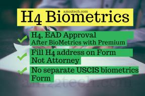 H4 Biometric experience