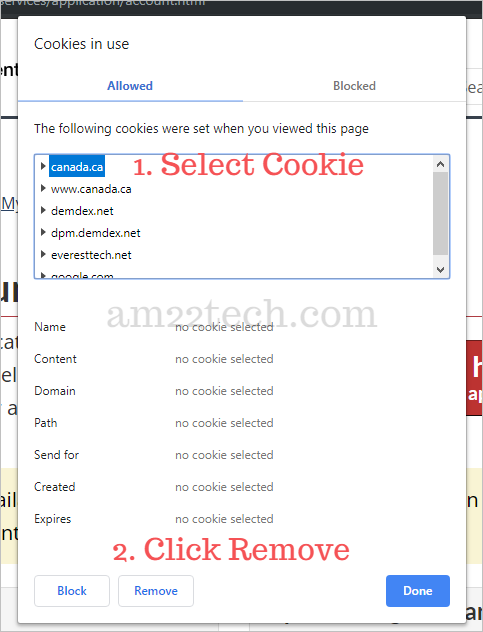 Delete all cookies on Canada CIC website